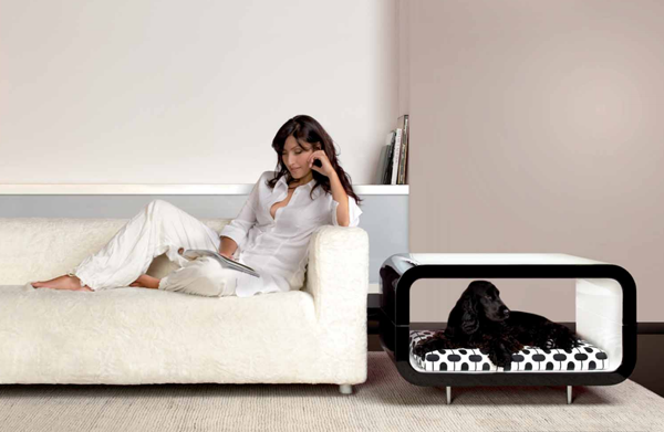Modern-Dog-Bed-in-Contemporary-Room-beside-the-Long-White-Sofa-on-the-Wide-Brown-Carpet